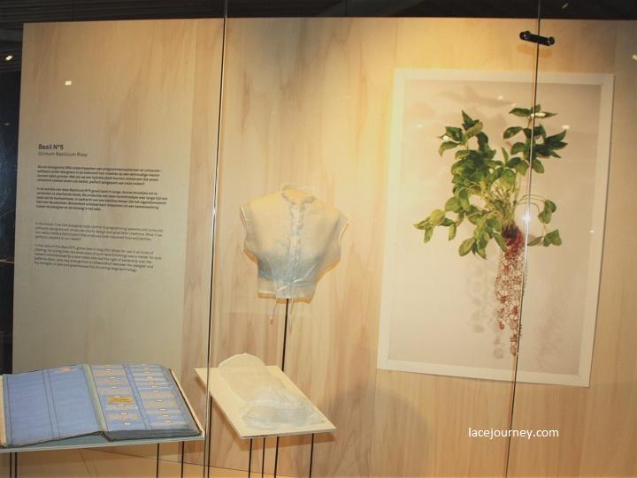 Бельгия, Кортрейк, Музей текстуры (фр. «Texture»). Выставка «Bio-lace» («Биологическое кружево»), 21 августа 2018 г.