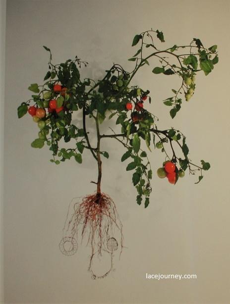 Бельгия, Кортрейк, Музей текстуры (фр. «Texture»). Выставка «Bio-lace» («Биологическое кружево»), 21 августа 2018 г. Factor 60 Tomato (Solanum Lycopene Fabricae).